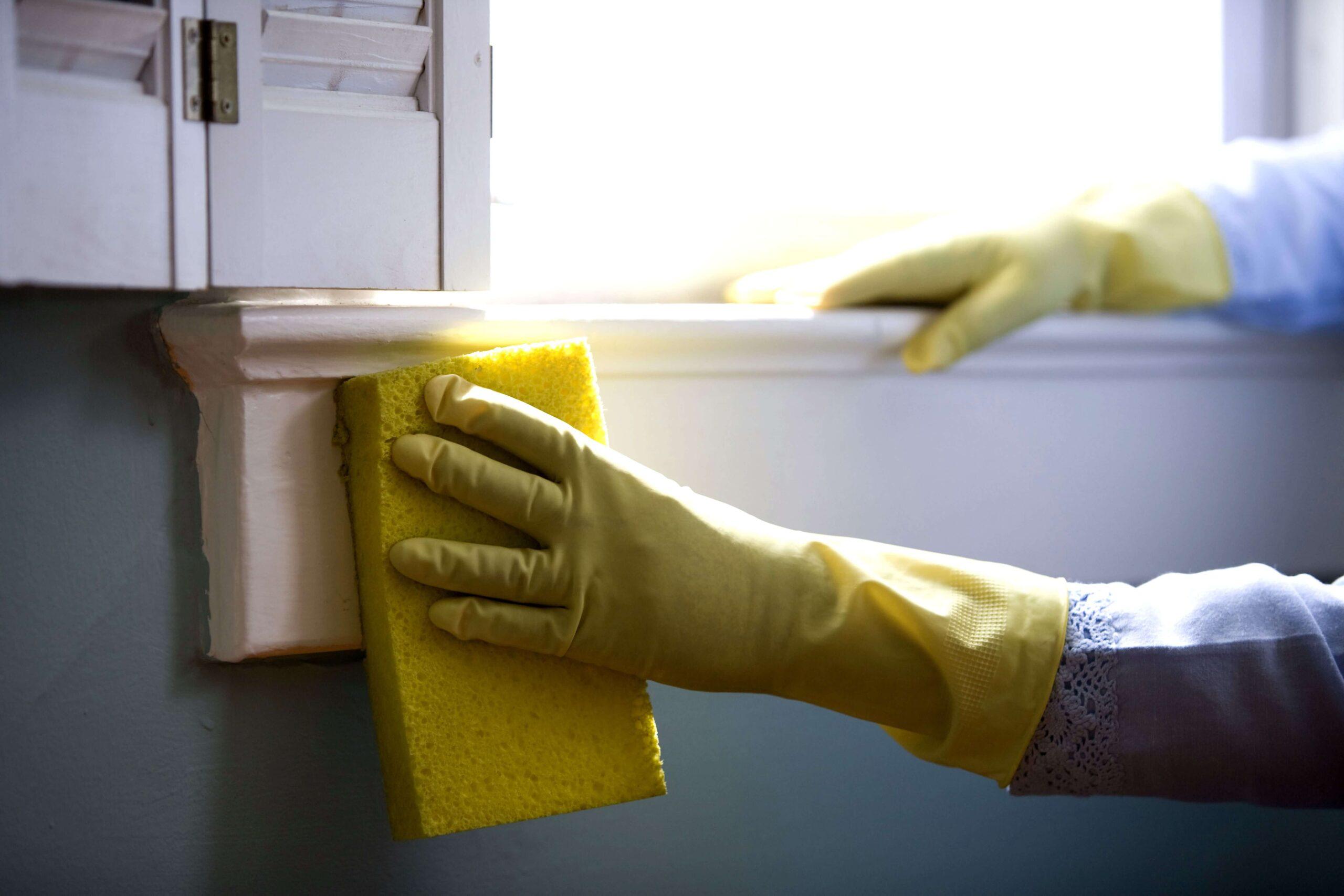 Empresas de limpieza en Gijon