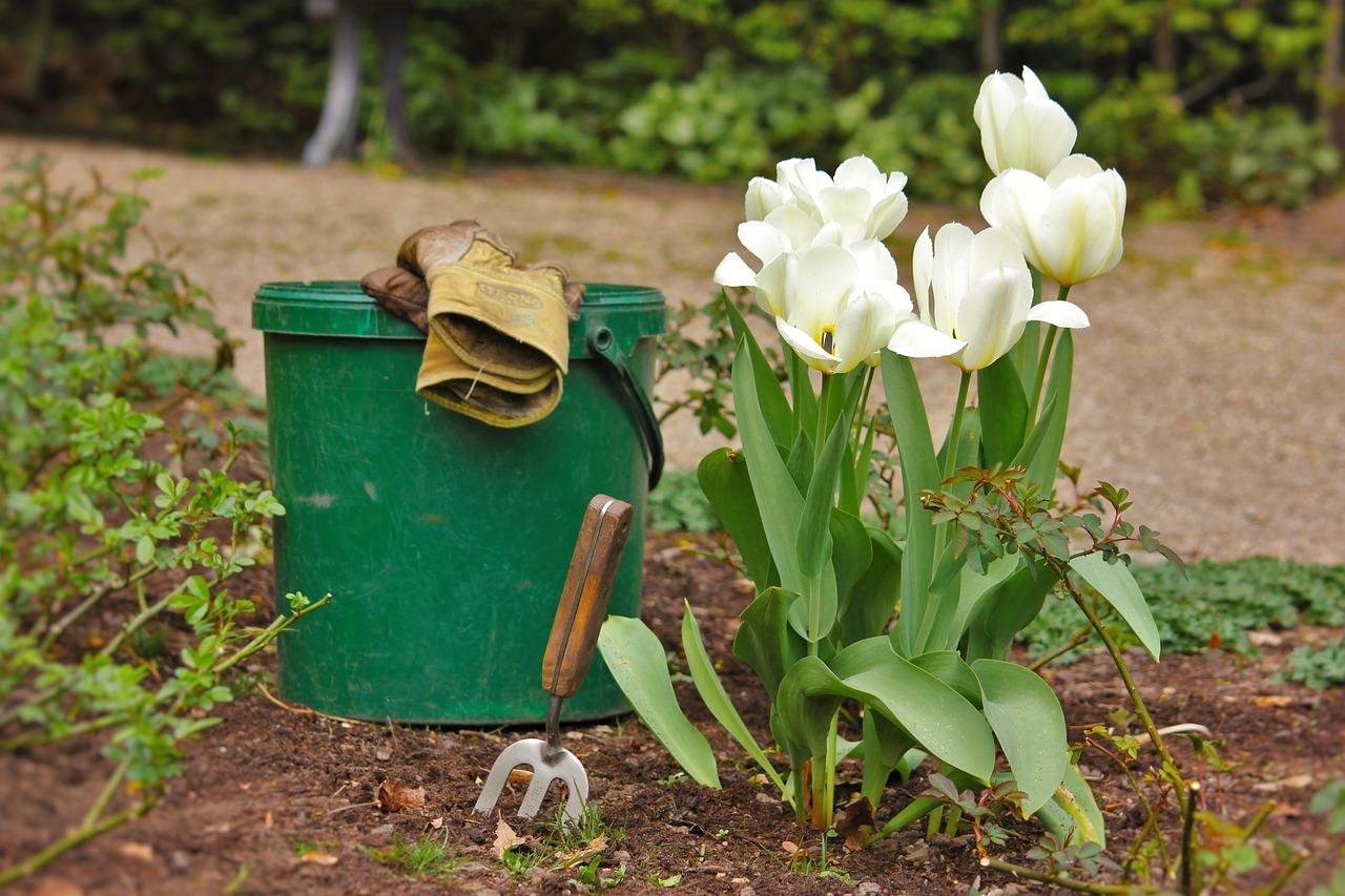 Empresas jardinería Asturias: preparar el jardín para primavera