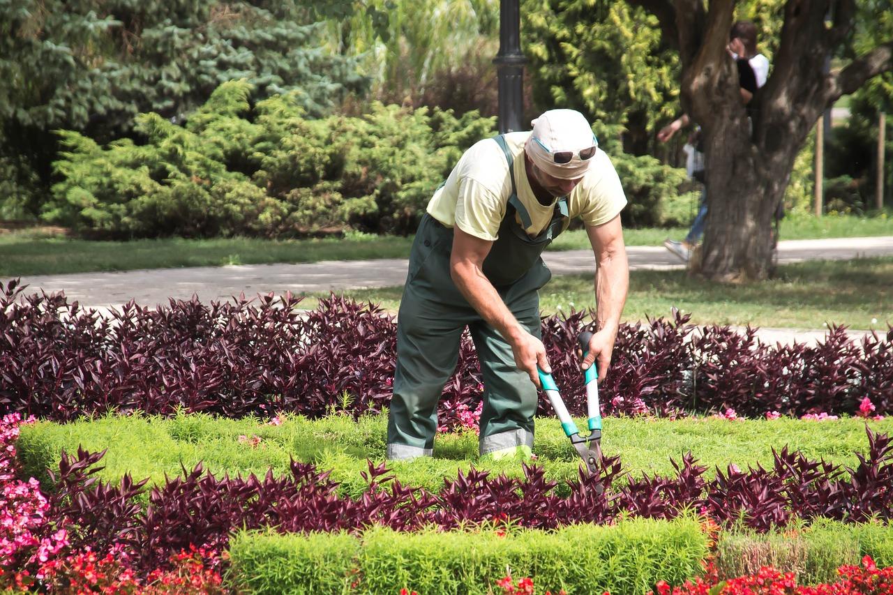 Empresa jardinería razones a favor